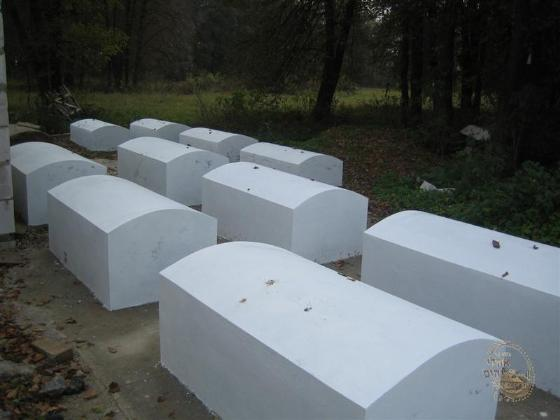Graves of the Menachem Nohum followers near the ohel