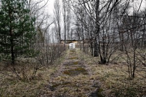 Way to monument on mass grave. Chernobyl Jewish Cemetery