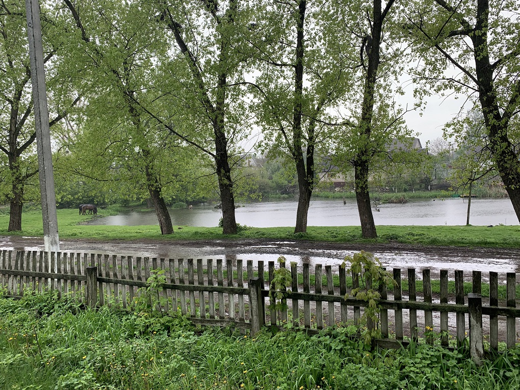 Lake in Berezdov. Photo provided by Mike Safyan in 2019