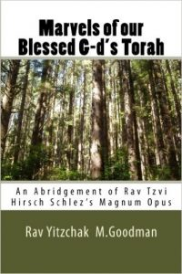 Cover of the book of Rabbi Tzvi Hirsh in English, 2013