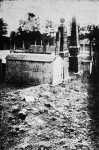 Mass grave of pogrom victims, 1920's