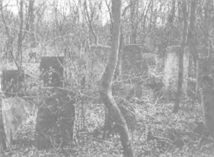 "New Jewish cemetery. Photo from <a kehilalinks.jewishgen.org/krasilov/Images/Proskurov/Chesed-Besht/Shtetl Vol 4, 2004 Proskurov area trip.pdf"">book</a>"
