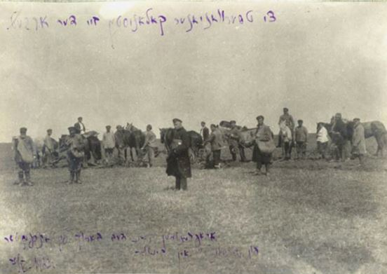 Colonists from Chervonyanska work in the fields