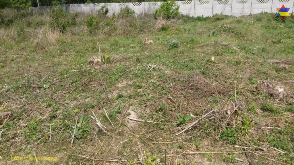 Unmarked Holocaust mass grave in local Jewish cemetery