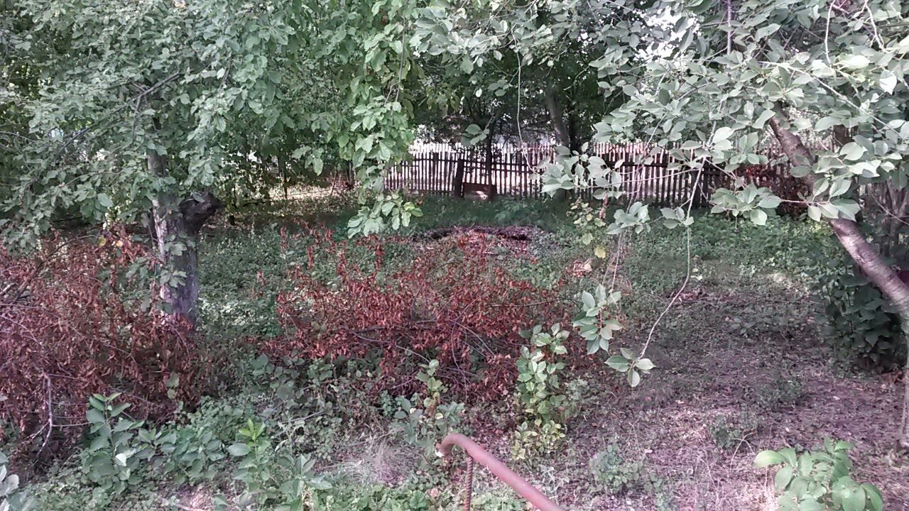 Site of the synagogue in Ladyzhinka. Now it is a garden of local peasant
